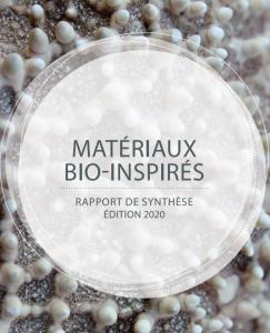 Rapport Matériaux bio-inspirés
