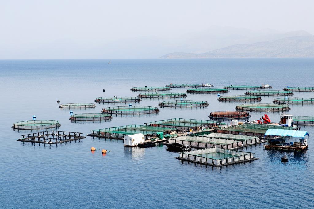 SeaBioComp Applications de composites biosourcés en environnement marin
